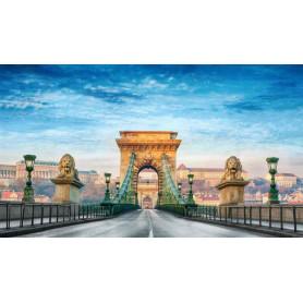 BUDAPEST CAPODANNO 31 DICEMBRE - 04 GENNAIO 2020 CON VOLO DA BOLOGNA Euro 650,00