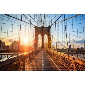 NEW YORK CAPODANNO 30 DICEMBRE - 05 GENNAIO 2022 VIAGGIO DI GRUPPO CON VOLO DA MILANO MXP Euro 2.670,00
