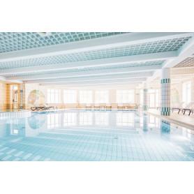 LEVICO TERME CAPODANNO SULLA NEVE HOTEL 4* CON CENTRO BENESSERE 3 NOTTI CENONE INCLUSO EURO 450,00