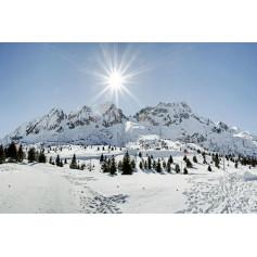 PONTE DI LEGNO TONALE 27 DICEMBRE - 02 GENNAIO 2021 CAPODANNO SULLA NEVE IN PULLMAN DA FANO PESARO Euro 880,00